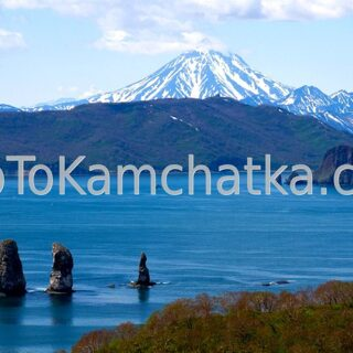 Kamchatka. Vilyuchinsky Volcano. View from Avacha bay