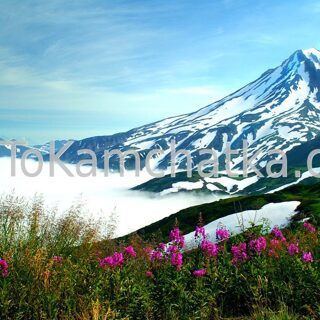 Kamchatka. Vilyuchinsky Volcano. View from plateau