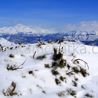 Kamchatka. Nalychevo Nature Park. Pinachevsky pass. Winter tours in Kamchatka