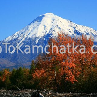 Kamchatka. Plosky Tolbachik and Ostry Tolbachik volcanoes. Tours in Kamchatka